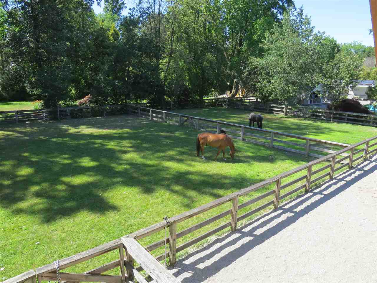 """Photo 19: Photos: 6630 BLENHEIM Street in Vancouver: Southlands House for sale in """"SOUTHLANDS EQUESTRIAN VILLAGE"""" (Vancouver West)  : MLS®# R2381725"""