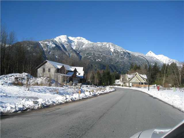 Main Photo: 41441 DRYDEN Road in Squamish: Brackendale Land for sale : MLS®# V921562
