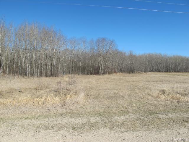 Photo 5: Photos:  in LIBAU: East Selkirk / Libau / Garson Residential for sale (Winnipeg area)  : MLS®# 1509713