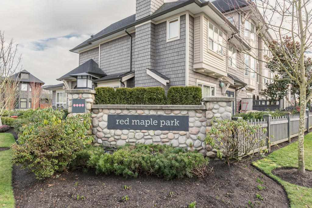 "Main Photo: 164 7938 209 Street in Langley: Willoughby Heights Townhouse for sale in ""RED MAPLE PARK"" : MLS®# R2102170"