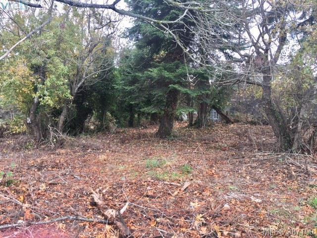 Main Photo: 3684 Saanich Rd in VICTORIA: SE Quadra Land for sale (Saanich East)  : MLS®# 777941