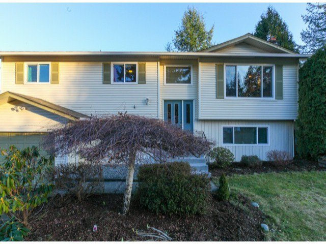 Main Photo:  in langley: Home for sale : MLS®# f1430295