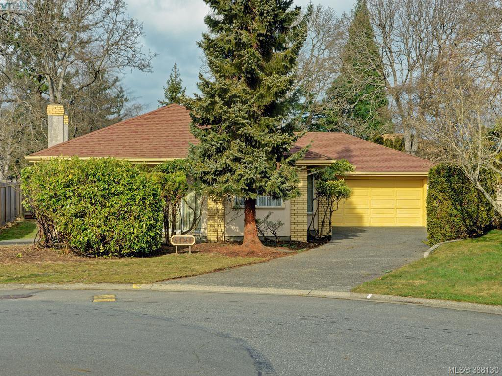 Main Photo: 4121 Mercer Pl in VICTORIA: SE Mt Doug Single Family Detached for sale (Saanich East)  : MLS®# 779972
