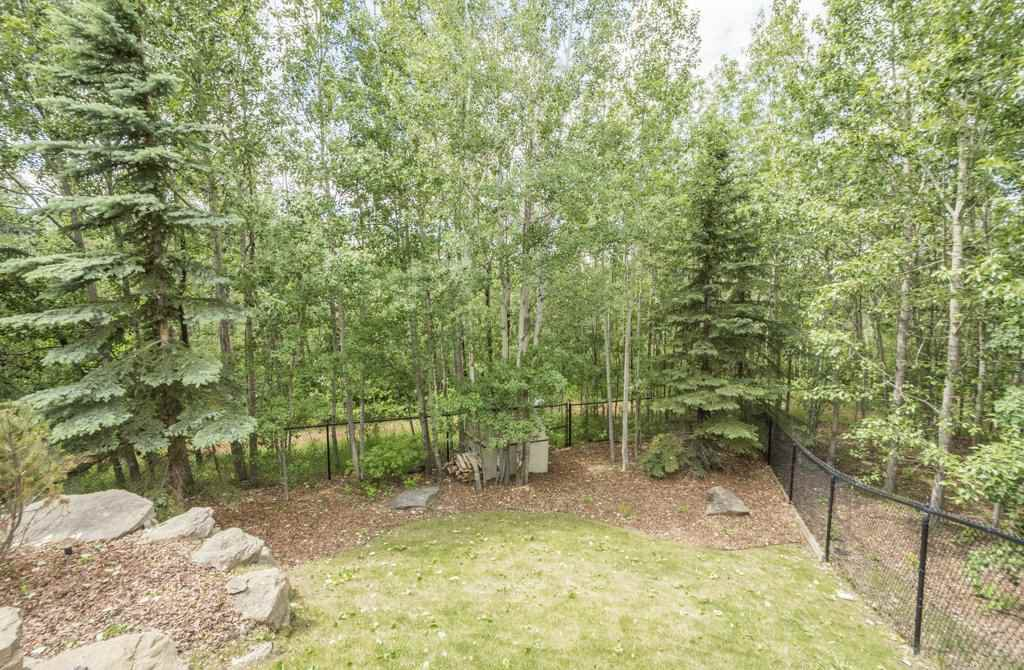 Photo 7: Photos: 1594 HECTOR Road in Edmonton: Zone 14 House for sale : MLS®# E4160153