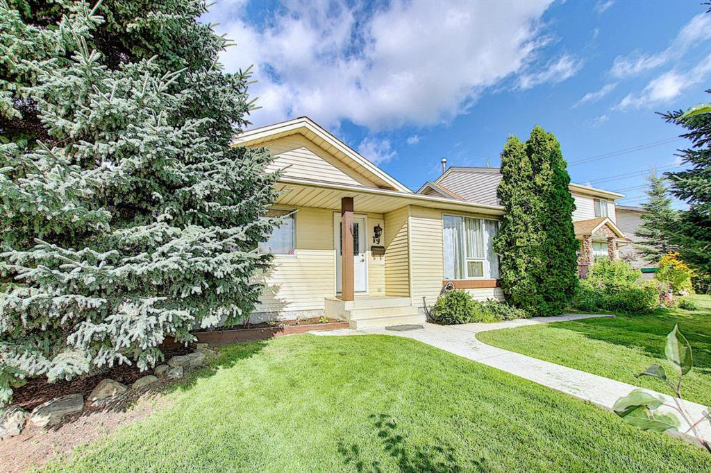 Main Photo: 19 TEMPLEBY Road NE in Calgary: Temple Detached for sale : MLS®# A1027919
