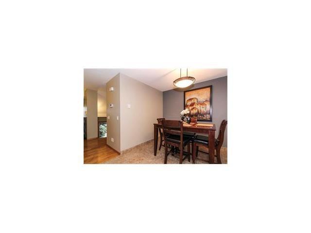 Photo 30: Photos: 124 INGLEWOOD Cove SE in Calgary: Inglewood House for sale : MLS®# C4046068