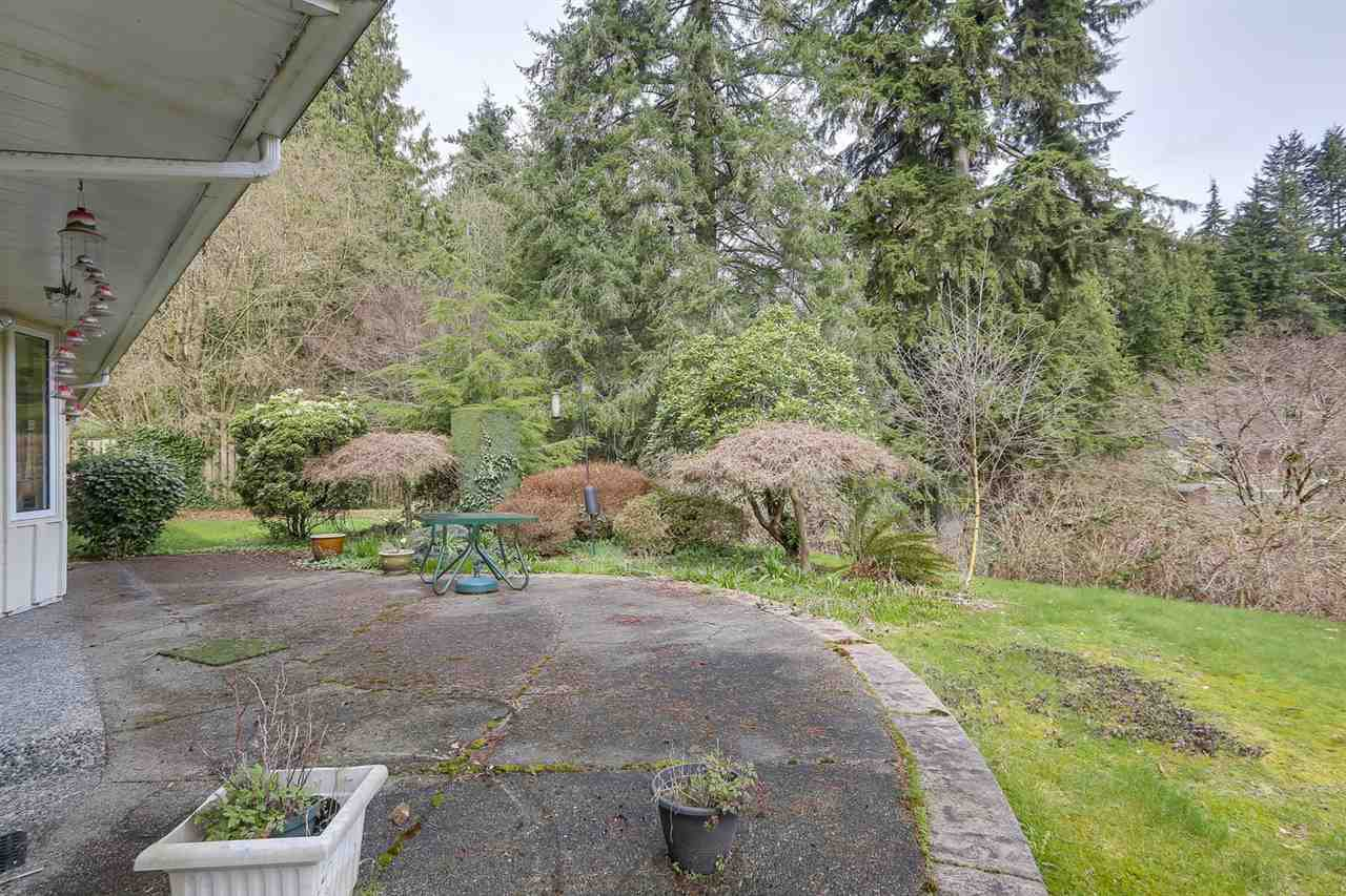 """Photo 18: Photos: 892 MARGAREE Place in West Vancouver: Cedardale House for sale in """"Cedardale"""" : MLS®# R2256348"""