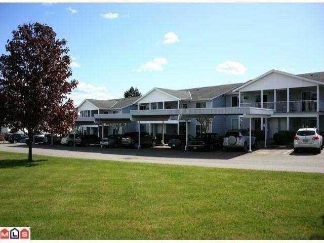 Main Photo: 97 32691 GARIBALDI Drive in Abbotsford: Abbotsford West Townhouse for sale : MLS®# F1410848