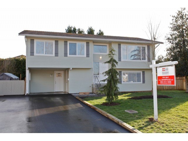 Main Photo: 20712 52ND Avenue in Langley: Langley City House for sale : MLS®# F1433979