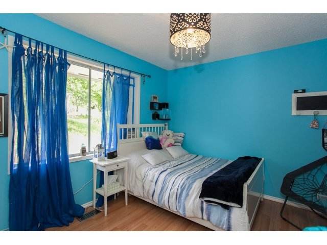 Photo 16: Photos: 34694 DEWDNEY TRUNK Road in Mission: Hatzic House for sale : MLS®# R2073735