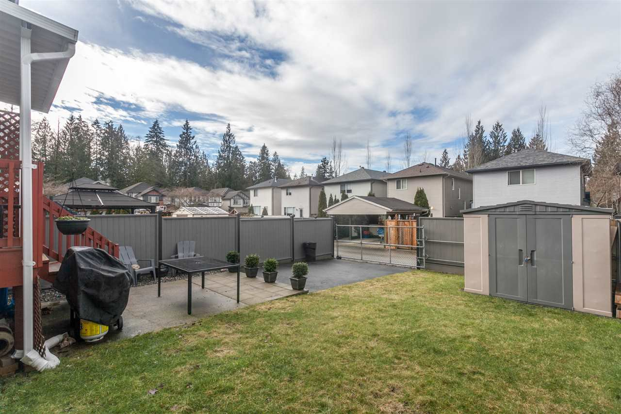 Photo 20: Photos: 10091 243 Street in Maple Ridge: Albion House for sale : MLS®# R2133397