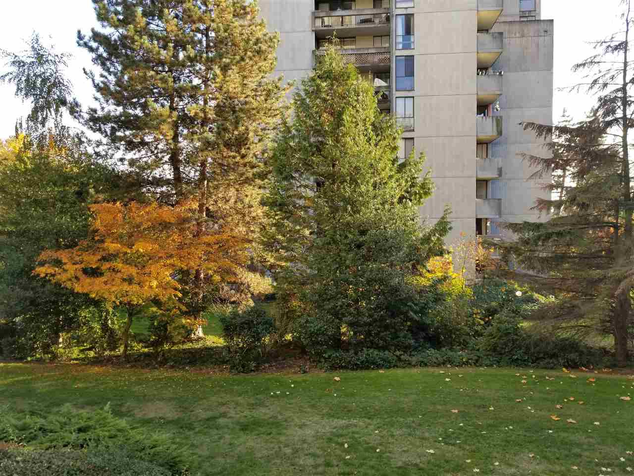 Main Photo: 206 6689 WILLINGDON AVENUE in Burnaby: Metrotown Condo for sale (Burnaby South)  : MLS®# R2218866