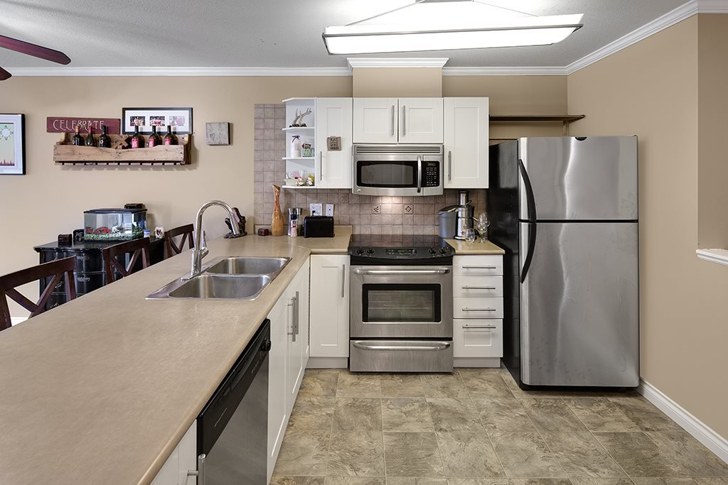 Photo 11: Photos: 101 22230 NORTH Avenue in Maple Ridge: West Central Condo for sale : MLS®# R2354509