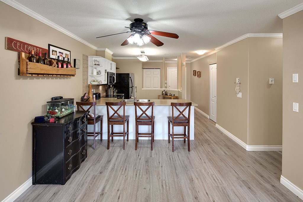 Photo 8: Photos: 101 22230 NORTH Avenue in Maple Ridge: West Central Condo for sale : MLS®# R2354509