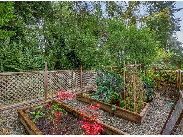 "Photo 20: Photos: 13969 TRITES Road in Surrey: Panorama Ridge House for sale in ""PANORAMA RIDGE"" : MLS®# F1428454"