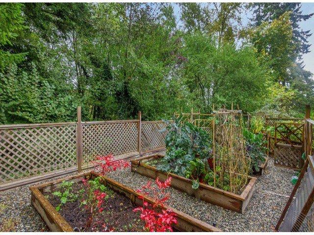 "Photo 19: Photos: 13969 TRITES Road in Surrey: Panorama Ridge House for sale in ""PANORAMA RIDGE"" : MLS®# F1428454"