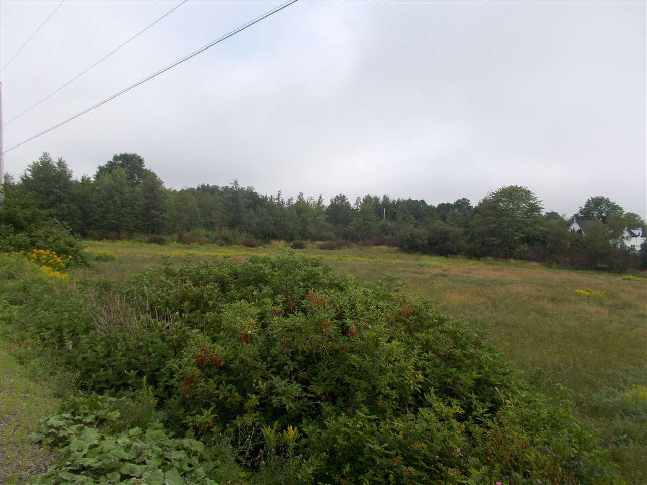 Main Photo: Hwy 216 Highway in South Maitland: 105-East Hants/Colchester West Vacant Land for sale (Halifax-Dartmouth)  : MLS®# 201919772