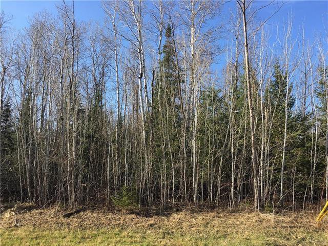Main Photo: 52 Fred Jeschke Drive in Lac Du Bonnet RM: Granite Hills Residential for sale (R28)  : MLS®# 202006877
