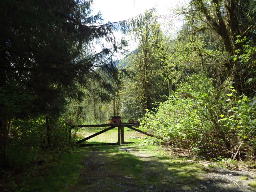 Main Photo: 146 DOGHAVEN LANE in Squamish: Upper Squamish Land for sale : MLS®# R2186038