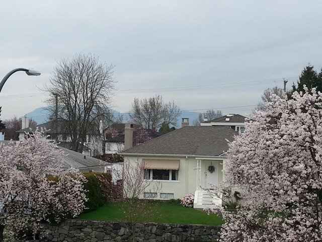 Photo 4: Photos: 2228 W 22ND Avenue in Vancouver: Arbutus House for sale (Vancouver West)  : MLS®# V1104461
