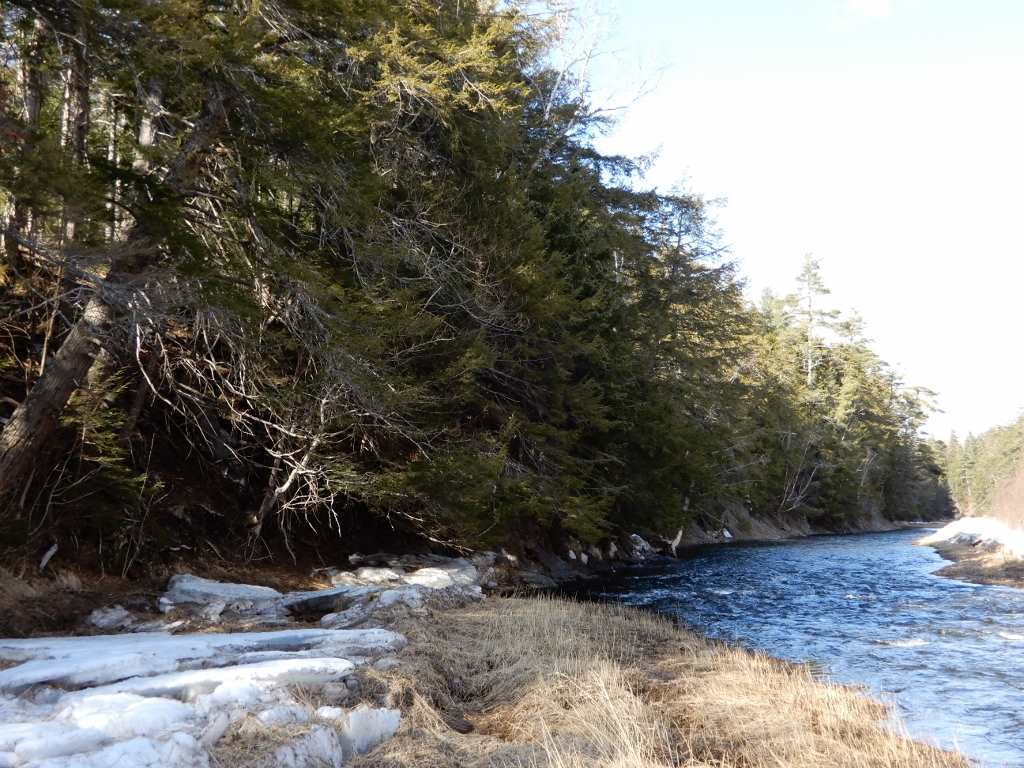 Main Photo: West River Station Road in Salt Springs: 108-Rural Pictou County Vacant Land for sale (Northern Region)  : MLS®# 202006078