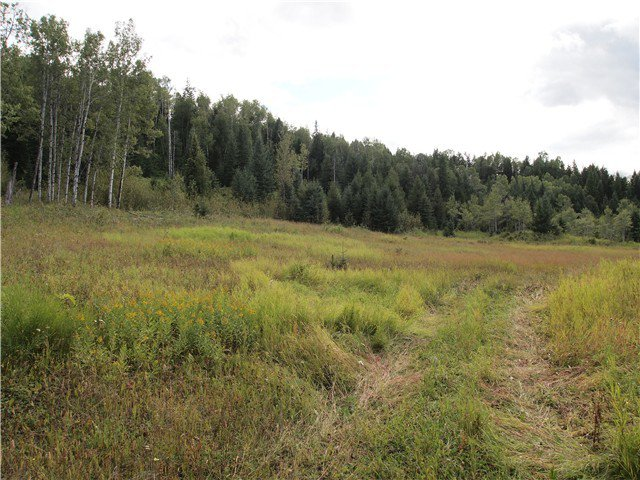 Main Photo: BISS RD in Canim Lake: Canim/Mahood Lake Land for sale (100 Mile House (Zone 10))  : MLS®# N230019