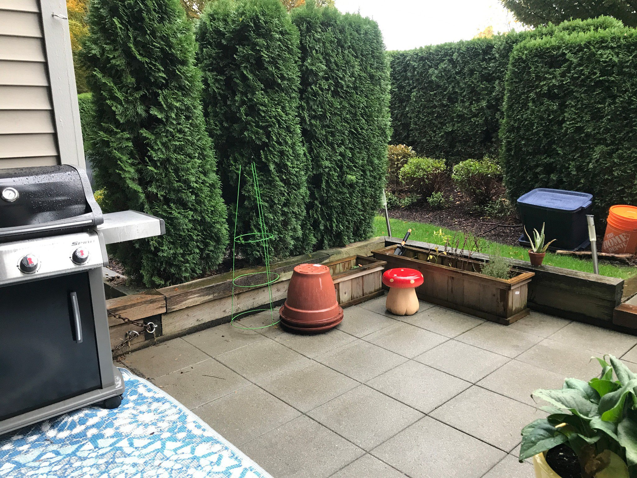 Photo 11: Photos: #104 2943 Nelson Pl in Abbotsford: Central Abbotsford Condo for rent