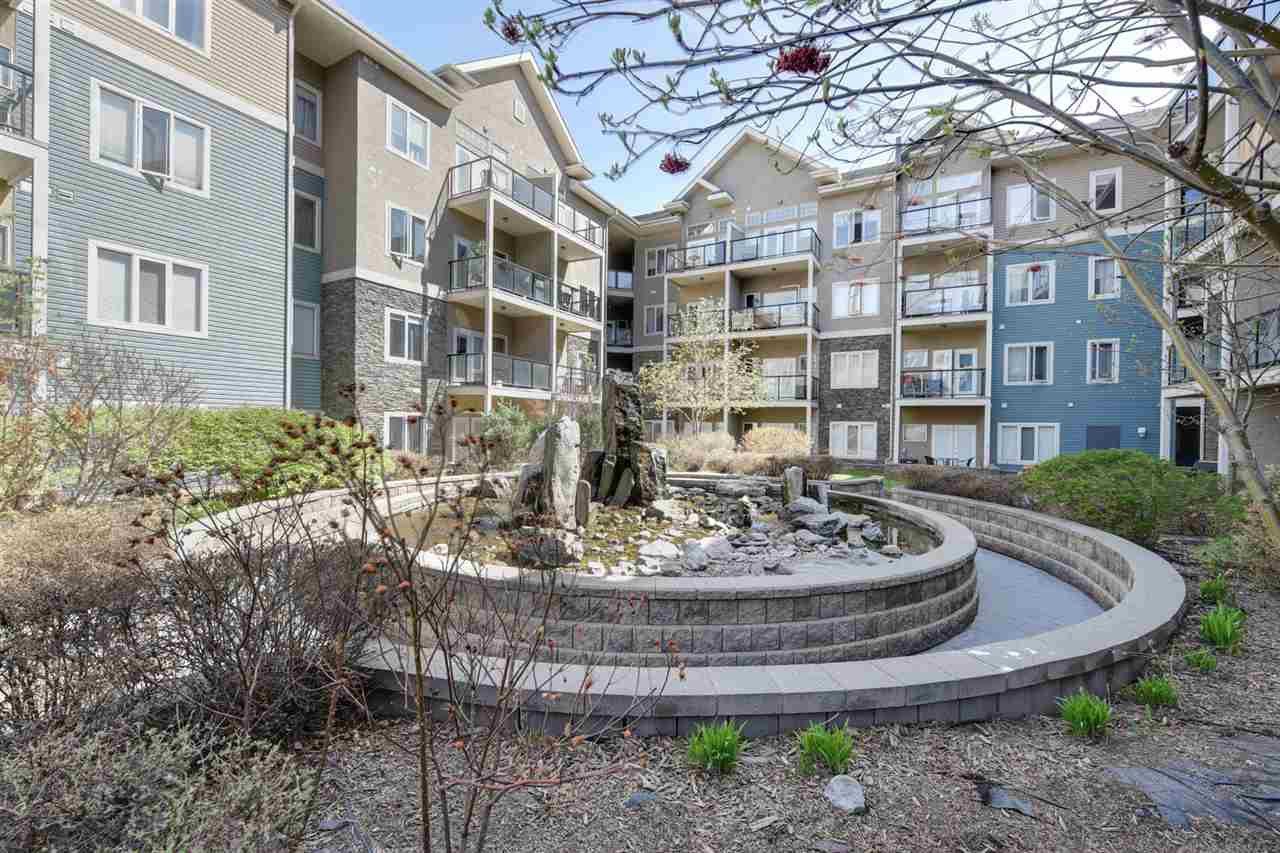 Main Photo: 217 10121 80 Avenue in Edmonton: Zone 17 Condo for sale : MLS®# E4197974