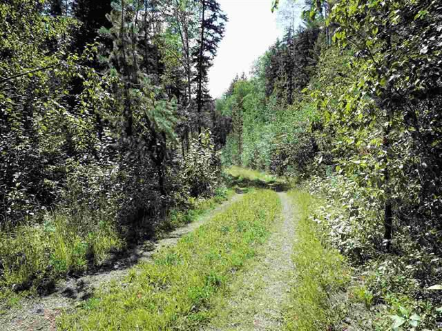 Photo 13: Photos: 3368 HENDRIX Road in Canim Lake: Canim/Mahood Lake House for sale (100 Mile House (Zone 10))  : MLS®# R2435282