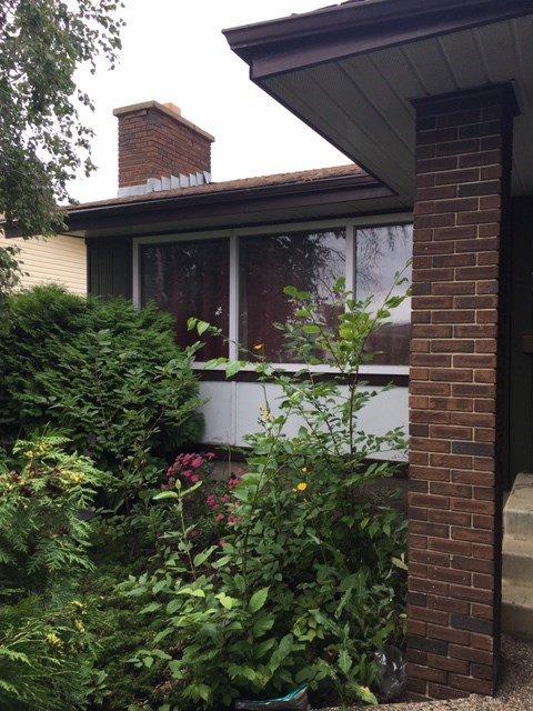 Main Photo: 13516 42 Street in Edmonton: Zone 35 House for sale : MLS®# E4170246