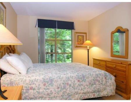 Photo 4: Photos: # 29 4737 SPEARHEAD DR in Whistler: Condo for sale : MLS®# V689682