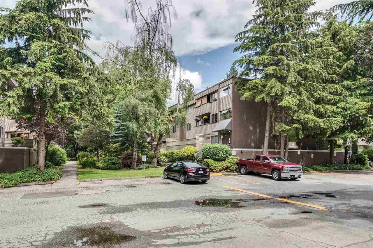 "Photo 21: Photos: 1 2432 WILSON Avenue in Port Coquitlam: Central Pt Coquitlam Condo for sale in ""ORCHARD VALLEY ESTAT3ES"" : MLS®# R2464176"