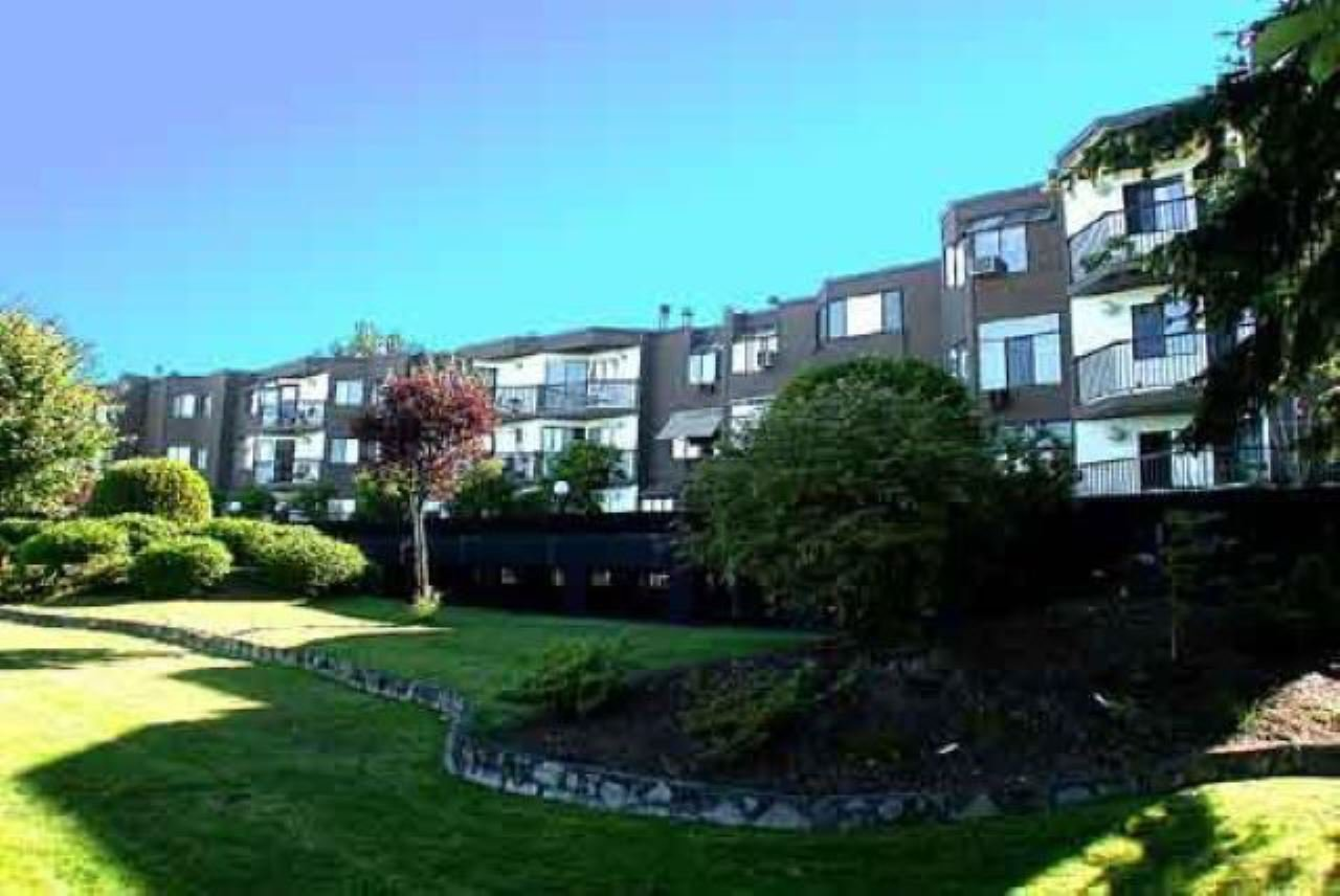 "Main Photo: 35 11900 228TH Street in Maple Ridge: East Central Condo for sale in ""Moonlite Grove"" : MLS®# R2523375"