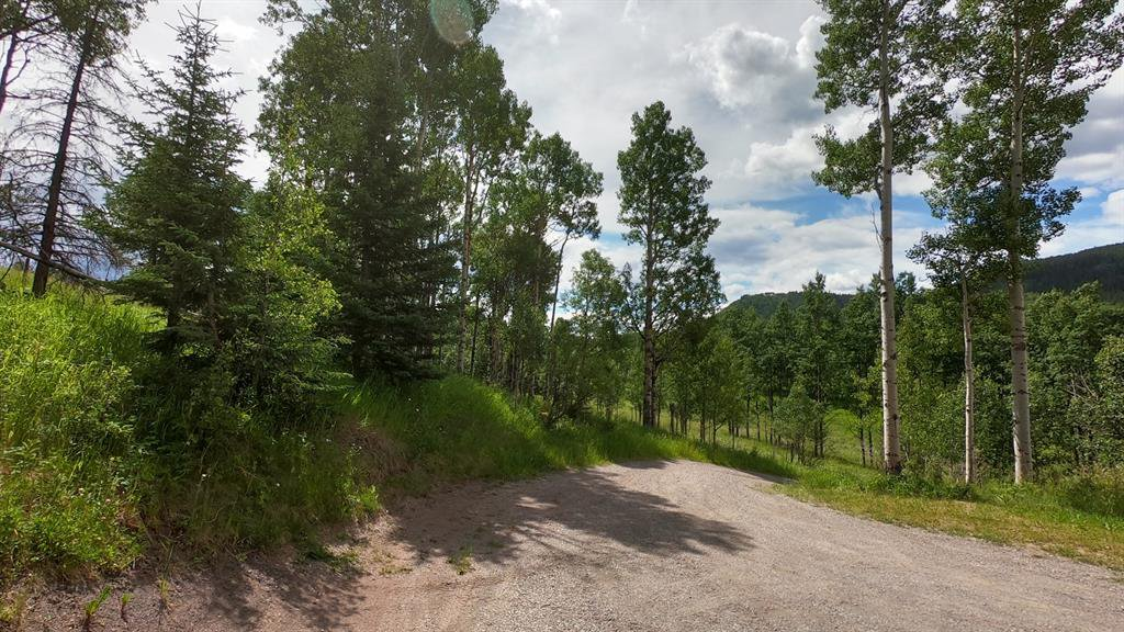 Photo 40: Photos: 74194 Highway 40 in Rural Bighorn No. 8, M.D. of: Rural Bighorn M.D. Detached for sale : MLS®# A1017139