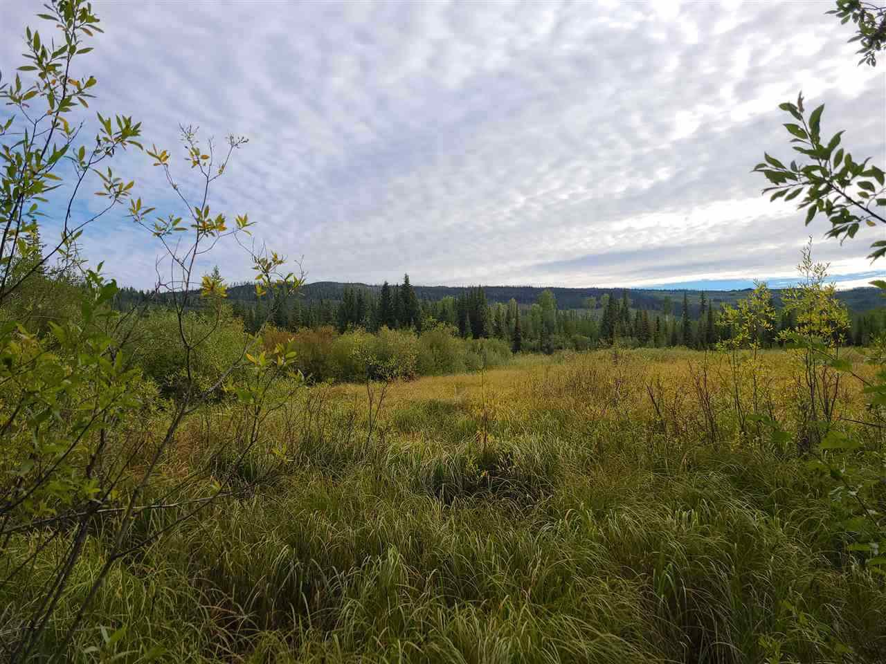 Main Photo: DL 12203 BRADLEY CREEK Road: Forest Grove Land for sale (100 Mile House (Zone 10))  : MLS®# R2525225