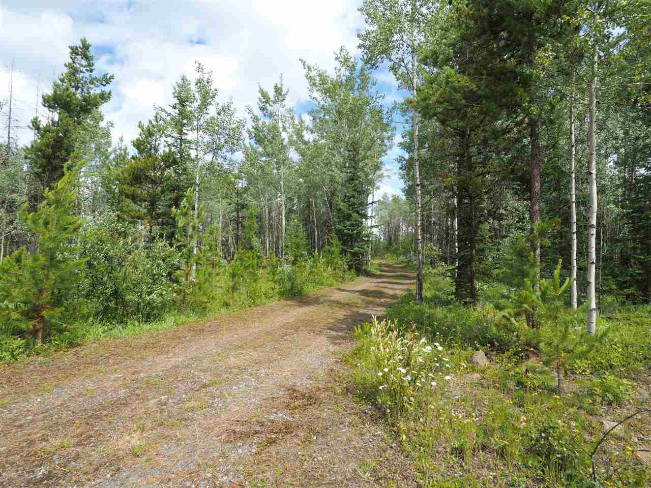 Photo 2: Photos: 5532 LITTLE FORT 24 Highway in Lone Butte: Lone Butte/Green Lk/Watch Lk Land for sale (100 Mile House (Zone 10))  : MLS®# R2419528