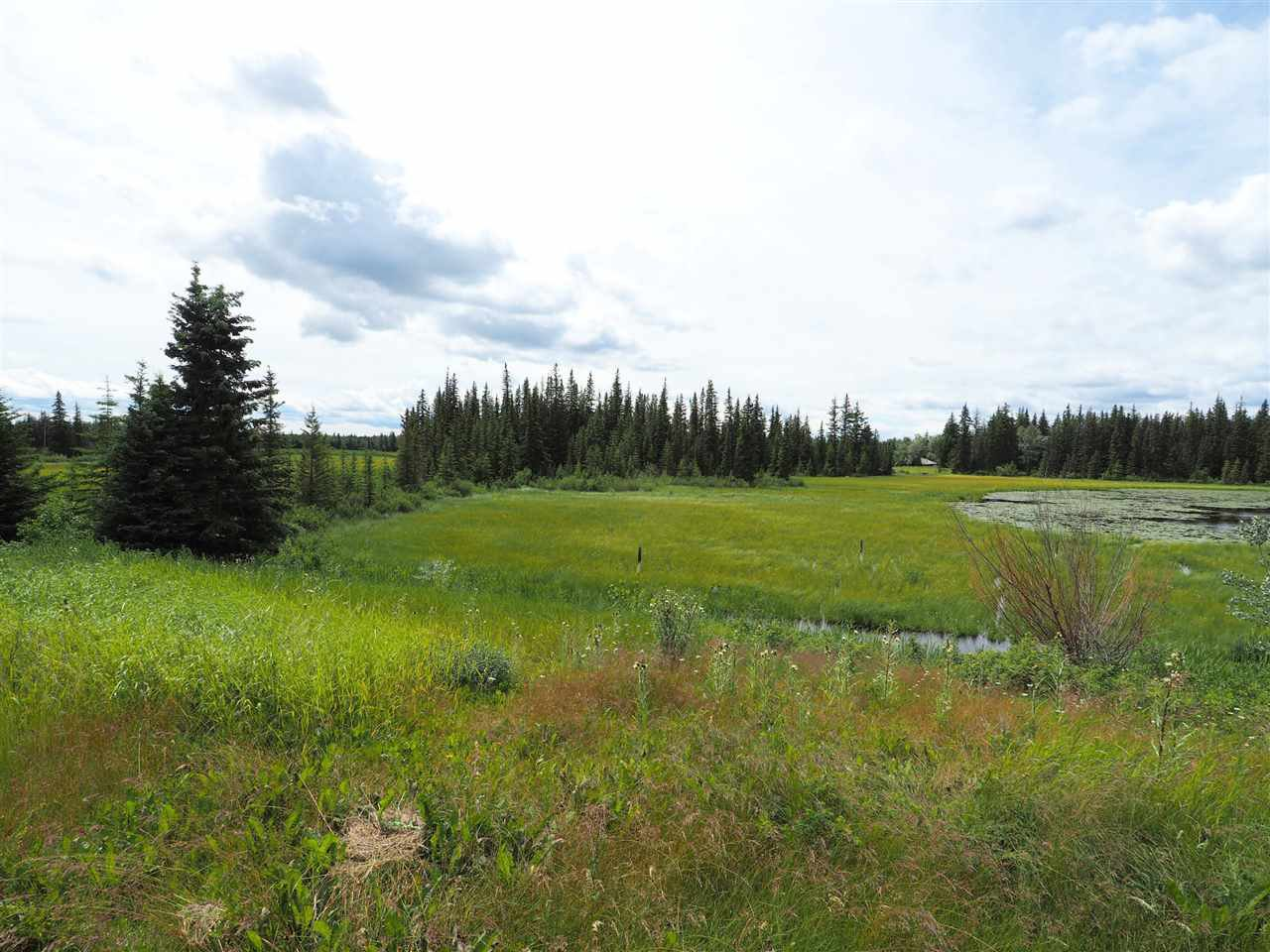 Photo 6: Photos: 5532 LITTLE FORT 24 Highway in Lone Butte: Lone Butte/Green Lk/Watch Lk Land for sale (100 Mile House (Zone 10))  : MLS®# R2419528