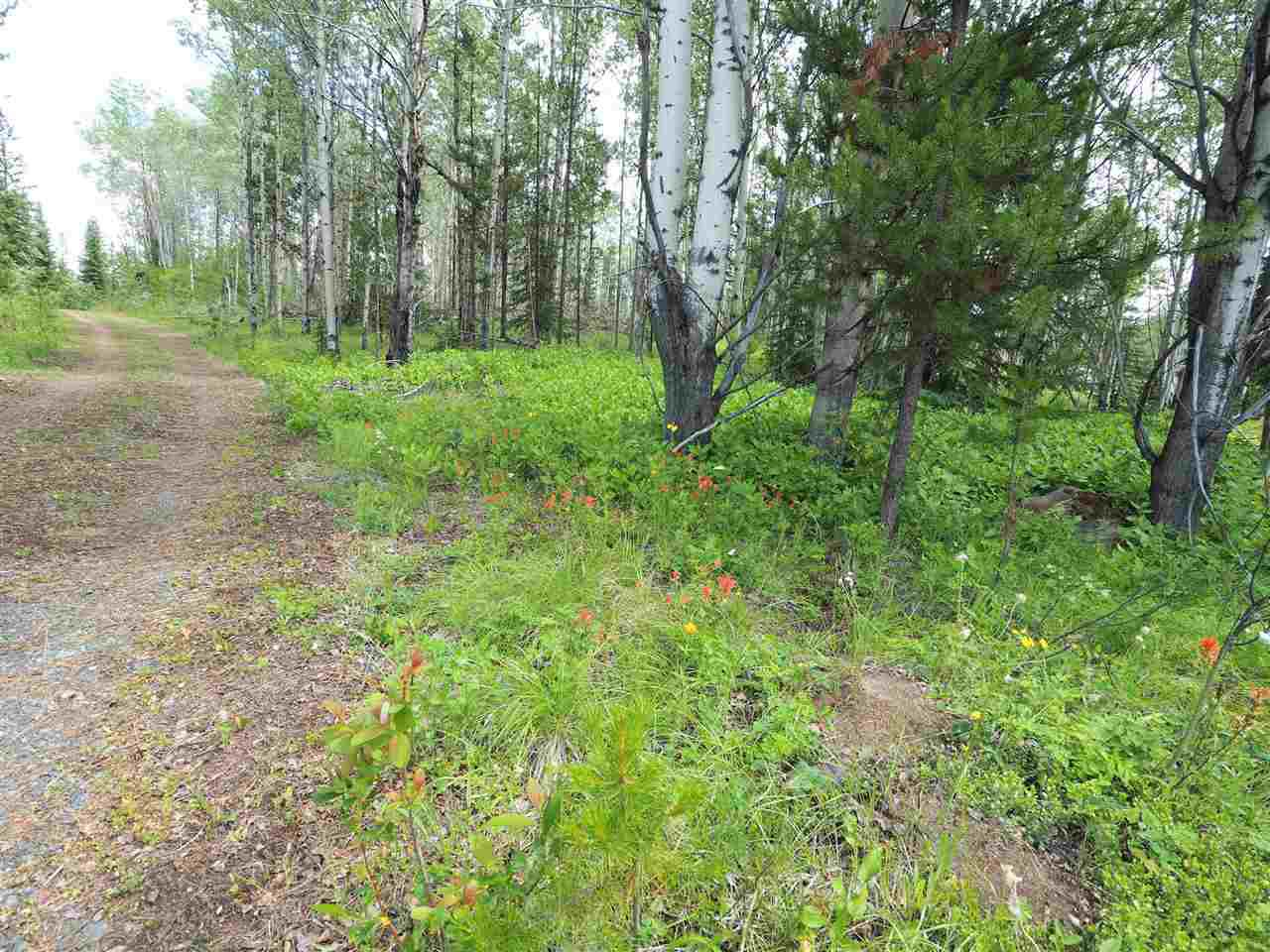 Photo 9: Photos: 5532 LITTLE FORT 24 Highway in Lone Butte: Lone Butte/Green Lk/Watch Lk Land for sale (100 Mile House (Zone 10))  : MLS®# R2419528