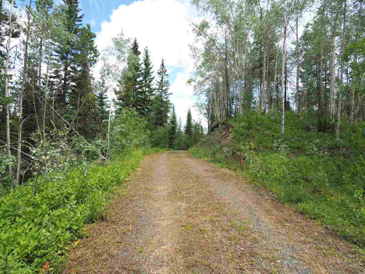 Photo 12: Photos: 5532 LITTLE FORT 24 Highway in Lone Butte: Lone Butte/Green Lk/Watch Lk Land for sale (100 Mile House (Zone 10))  : MLS®# R2419528