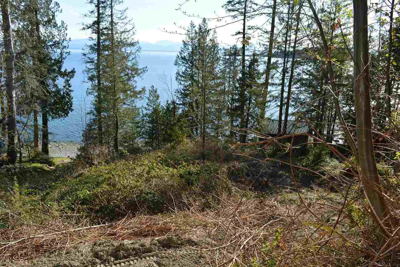 Photo 18: Photos: 8223 REDROOFFS Road in Halfmoon Bay: Halfmn Bay Secret Cv Redroofs House for sale (Sunshine Coast)  : MLS®# R2464862