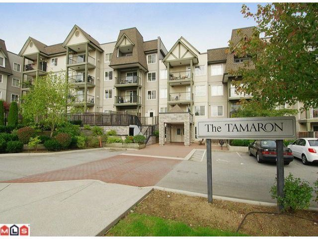 "Main Photo: 202 12083 92A Avenue in Surrey: Queen Mary Park Surrey Condo for sale in ""TAMARON"" : MLS®# F1210902"
