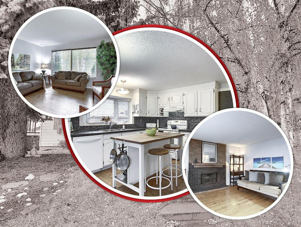 Main Photo: 239 Silvercreek Way NW in Calgary: Silver Springs Detached for sale : MLS®# A1040250