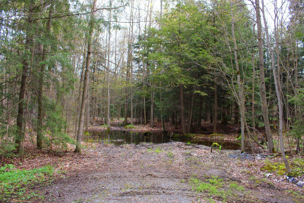 Photo 25: Photos: 5531 5Th Line Road in Port Hope: House for sale : MLS®# 510590226