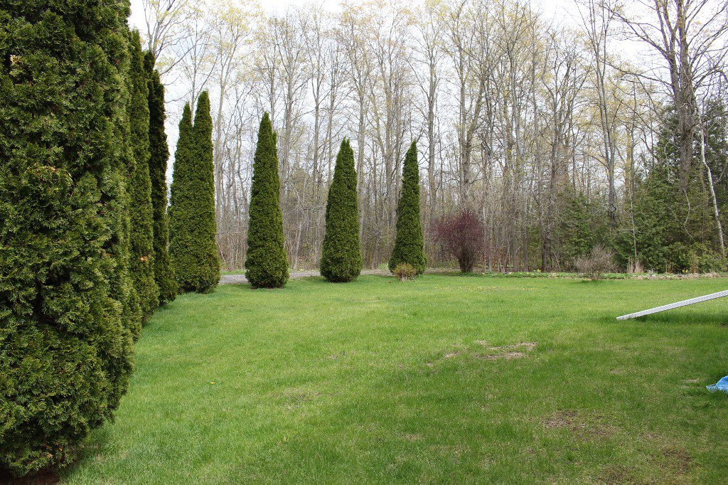 Photo 23: Photos: 5531 5Th Line Road in Port Hope: House for sale : MLS®# 510590226