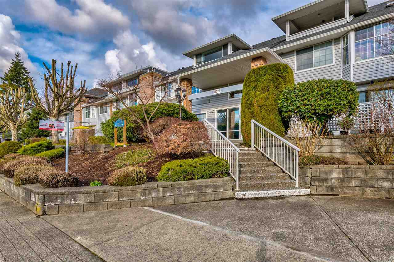 "Main Photo: 203 11578 225 Street in Maple Ridge: East Central Condo for sale in ""The Willows"" : MLS®# R2447700"