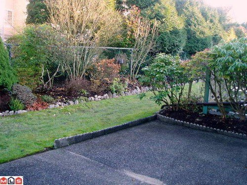 Photo 10: Photos: 1105 21937 48TH Ave in Langley: Murrayville Home for sale ()  : MLS®# F1129012