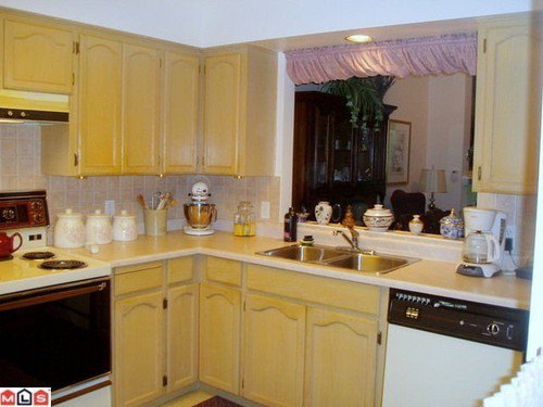 Photo 3: Photos: 1105 21937 48TH Ave in Langley: Murrayville Home for sale ()  : MLS®# F1129012