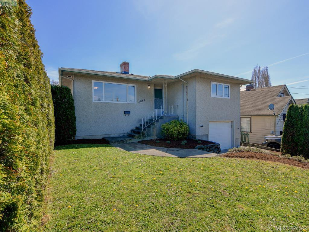 Main Photo: 3067 Albina Street in VICTORIA: SW Gorge Single Family Detached for sale (Saanich West)  : MLS®# 424182