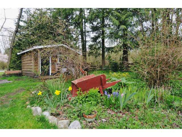 Photo 4: Photos: 11731 246TH Street in Maple Ridge: Cottonwood MR House for sale : MLS®# V1012742