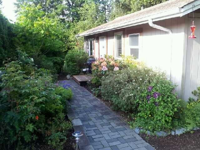 Photo 1: Photos: 11731 246TH Street in Maple Ridge: Cottonwood MR House for sale : MLS®# V1012742